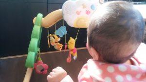 プーメリーで遊ぶ赤ちゃん